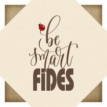 fides-cartone1.jpg
